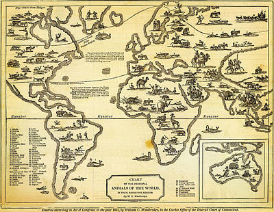 Antique Map Of  Chart Of Principal Animals Of The World 1831 Poster by Celestial Images