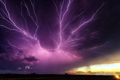 Anvil Crawler Lightning #1 Poster by Marko Korosec
