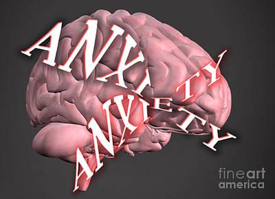 Anxiety Poster by Scott Camazine
