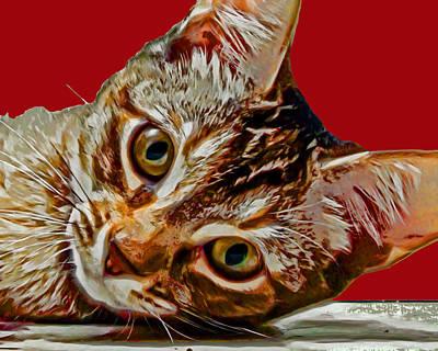Anya Cat 3 Poster