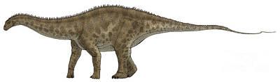 Apatosaurus, A Sauropod Dinosaur Poster by Vitor Silva