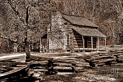 Appalachian Cabin - Toned Poster by Paul W Faust -  Impressions of Light