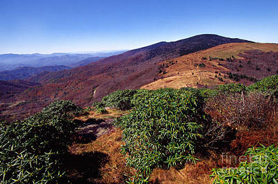 Appalachian Trail From Jane Bald Poster