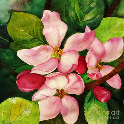 Apple Blossom Poster by Anjali Vaidya