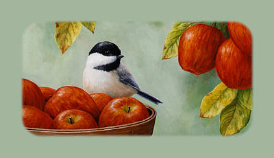 Apple Chickadee Iphone5 Case - Green Poster by Crista Forest