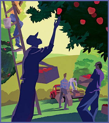 Apple Pickers Poster by Clifford Faust