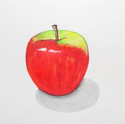 Apple Poster by Kenneth A Mc Williams