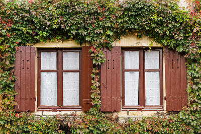 Apremont-sur-allier Windows Poster by Oleg Koryagin