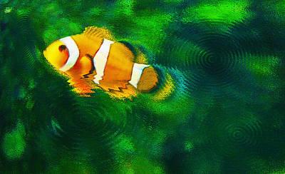 Aquarium Art 27 - Solo Clown - Feeding Time Poster by Steve Ohlsen