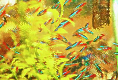 Aquarium Art 7 Poster by Steve Ohlsen