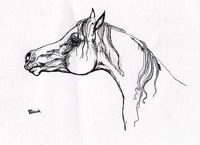 Arabian Horse Drawing 20 Poster