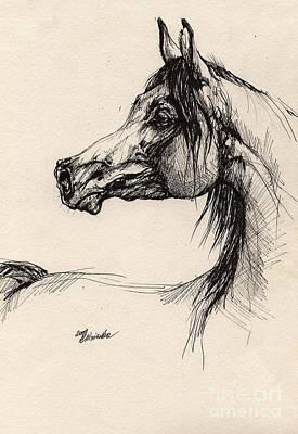 Arabian Horse Drawing 26 Poster