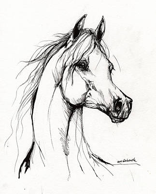Arabian Horse Drawing 38 Poster by Angel  Tarantella