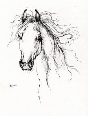 Arabian Horse Drawing 4 Poster