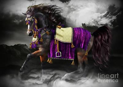 Arabian Horse  Shaitan Poster by Shanina Conway