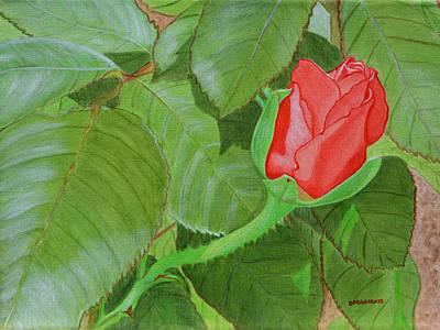 Arboretum Rose Poster