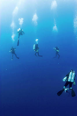 Archaeologists Diving To Shipwreck Poster by Noaa