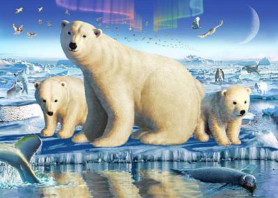 Arctic Splendor Poster by Adrian Chesterman