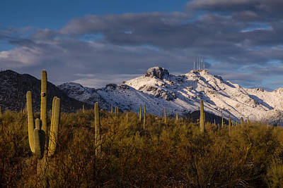Arizona Mountains In Snow Poster by Rob Travis