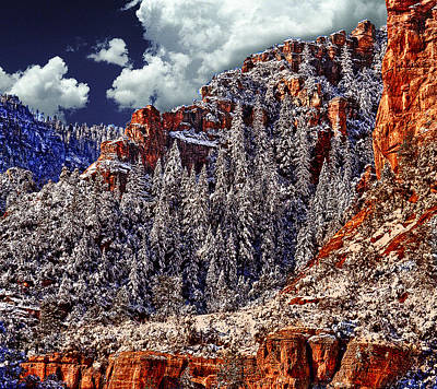 Arizona Secret Mountain Wilderness In Winter Poster by Bob and Nadine Johnston