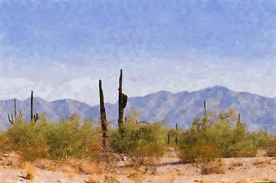 Arizona Sonoran Desert Poster