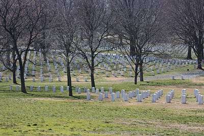 Arlington National Cemetery - 12124 Poster by DC Photographer