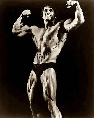Arnold Schwarzenegger Poster by Studio Release