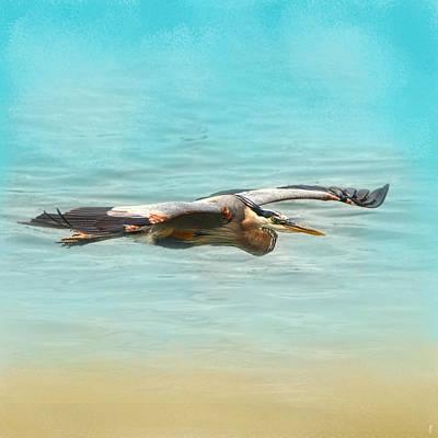 Arrival - Blue Heron - Wildlife Poster by Jai Johnson
