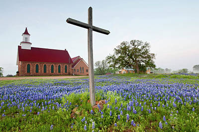 Art Methodist Church And Bluebonnets Poster