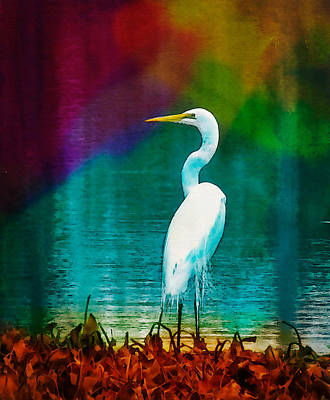 Art Of The Egret Poster by Frank Bright