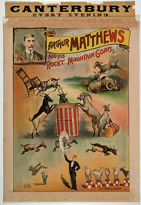 Arthur Matthews And His Rocky Mountain Go Poster by British Library