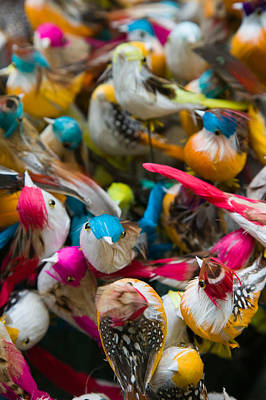 Artificial Birds For Sale At A Market Poster