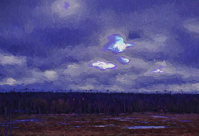 Artistic Paintiry Something In The Sky Landscape With A Coverd Sky An Early Morning Poster by Leif Sohlman