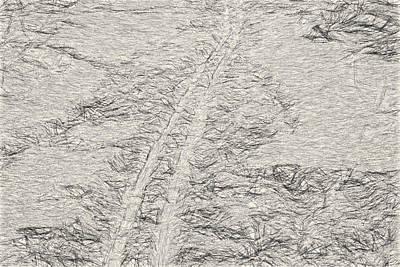 Artistic Ski Tracks In Snow Poster