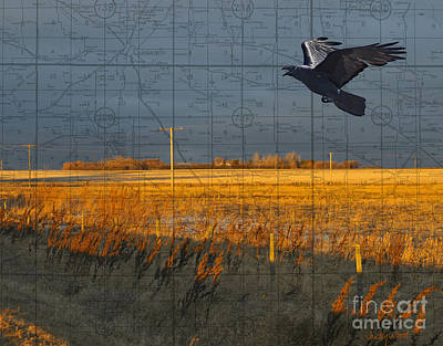As The Crow Flies-fall Fields Poster by Judy Wood