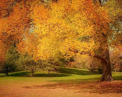 As The Leaves Fall Poster by Kim Hojnacki