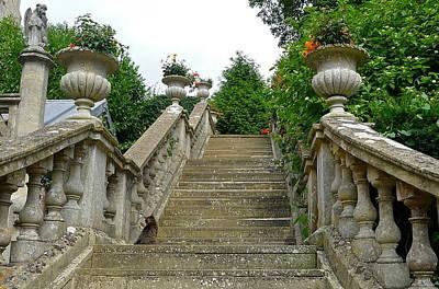 Ascending Garden Poster