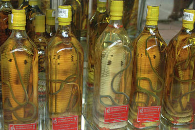 Asia, Vietnam Snake Wine For Sale Poster by Kevin Oke