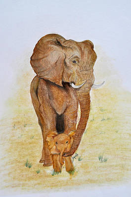 Asian Elephant With Baby Poster by Danae McKillop