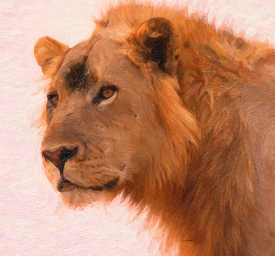 Aslan The King Art Poster by MotionAge Designs