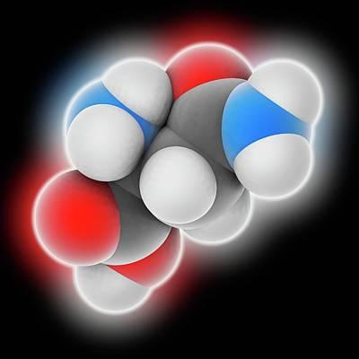 Asparagine Molecule Poster by Laguna Design