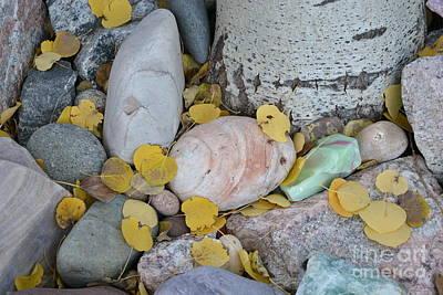 Aspen Leaves On The Rocks Poster