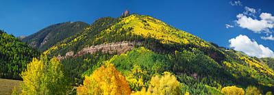 Aspen Trees On Mountain, Needle Rock Poster