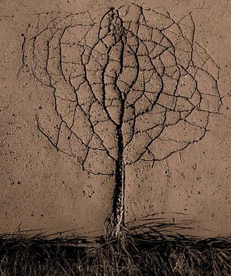 Asphalt Tree Poster