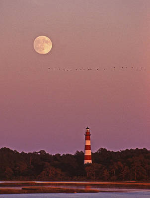 Assateague Lighthouse Va Poster by Skip Willits