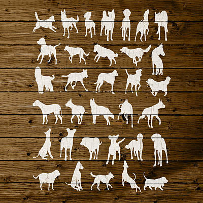 Assorted Dog Species Outline White Distressed Paint On Reclaimed Wood Planks Poster