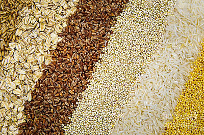 Assorted Grains Poster