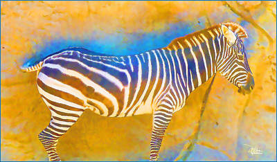 At The Zoo - Zebras Poster by Douglas MooreZart