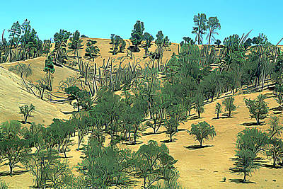 Atascadero Summertime Trees Poster by Wernher Krutein
