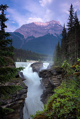 Athabasca Falls  Poster by Cale Best